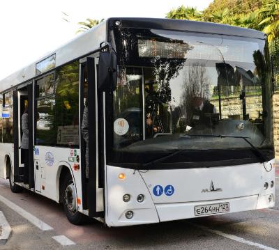 Автобус. Виды автобуса и квалификация